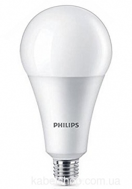 Лампа LED 19W E27 6500K 230V A80 APR Philips светодиодная